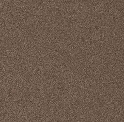 Looking for Interface carpet tiles? Biosfera Boucle in the color Occhio di Tigre is an excellent choice. View this and other carpet tiles in our webshop.